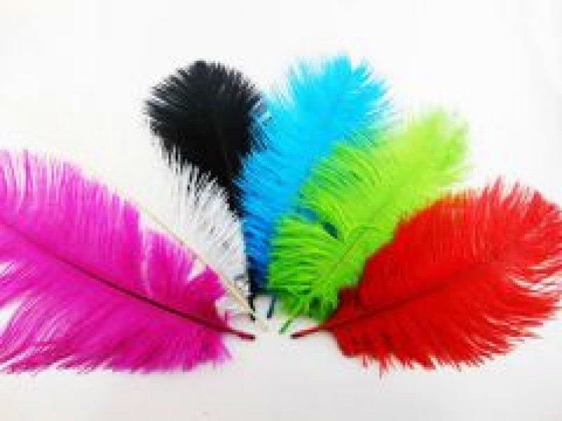 Puti Renkli Tüyler